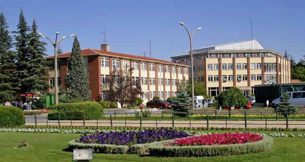 University of Chlef